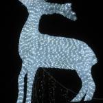 """Ein """"Glitzi-Deer"""""""