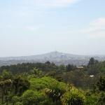 Blick auf Auckland