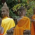Wat Yai Chai Mongkhon in Ayutthaya / Thailand