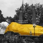 Declining Buddha in Ayutthaya / Thailand