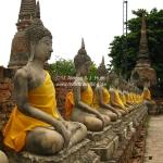 Buddhas in Ayutthaya / Thailand