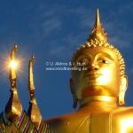 Leuchtender Buddha