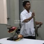Snake Farm in Bangkok / Thailand