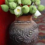 Lotusblüten als Opfergaben