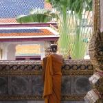 Auch Mönche haben Handys