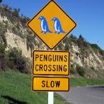 Achtung Pinguine!