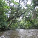 Bootsfahrt im Taman Negara Nationalpark
