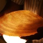 """Hier hat der """"Superkalligrapher Dubais"""" 65 Seiten des Korans auf eine große Muschel gezeichnet. Er wird 2010 im Guiness Buch der Rekorde stehen mit der kleinsten Gravierung der Welt, nämlich die eines Nadelkopfes."""