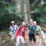 Unsere Regenwaldtour auf Pulau Tioman
