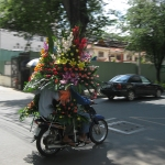 Blumentransport in HCMC / Vietnam