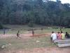 Hier kamen wenig später 14 wildlebende Elefanten aus dem Wald
