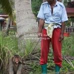 """Der Affe und sein """"Herrchen"""" gehen spazieren"""
