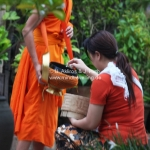 Almsgiving in Luang Prabang / Laos