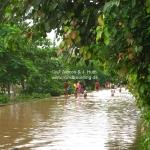 Überschwemmung in Luang Prabang / Laos