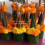 Offerings in Luang Prabang / Laos