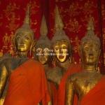 Neugierige Buddhas im Wat Xieng Thong in Luang Prabang / Laos