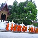 Almsgiving in Luang Prabang / Laos