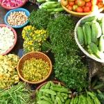 Auf dem bunten Gemüsemarkt in Can Tho / Vietnam