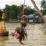 Bei dem Schiff gibts Krebse, auf dem Floating Market in Chau Doc / Mekong Delta / Vietnam