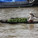 Auf dem Floating Market in Can Tho / Mekong Delta / Vietnam