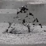 Dank Schnulls photografischem Ehrgeiz haben wir ca. 300 Fotos von den Mudpools, aber doch nicht den perfekten Blub!