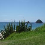 Ausblick von der Coromandel Halbinsel