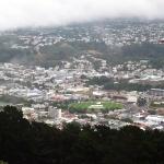 Ausblick auf Wellington