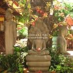 Buddhas unterm Magnolienbaum