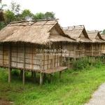 Dorf bei Phonsavan / Laos