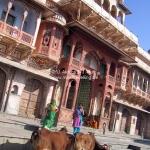 Auf dem Weg zur Camel Fair in Pushkar