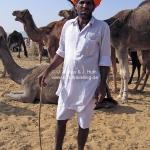 Kameltreiber auf der Camelfair in Pushkar