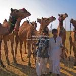 Kameltreiber auf der Camel Fair in Pushkar