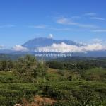 Mount Kota Kinabalu in Sabah / Borneo