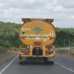Palmölplantagen in Sabah