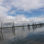 Bako National Park / Sarawak / Borneo