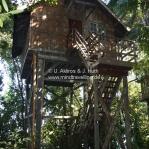 Unser Baumhaus in Sarawak / Borneo