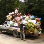 Wieviele Menschen und Bananen passen denn nun in sein Auto?