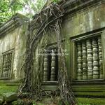 Beng Melea Tempel / Siem Reap