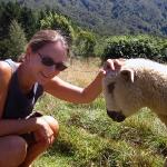Ja, bei so vielen Schafen ist natürlich auch mal eines dabei, das sich von uns streicheln lässt