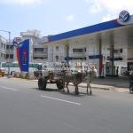 Der Kuhkarren und die Tankstelle