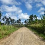 So sehen die Straßen auf Tonga aus, die wir mit dem Mietwagen erkundet haben
